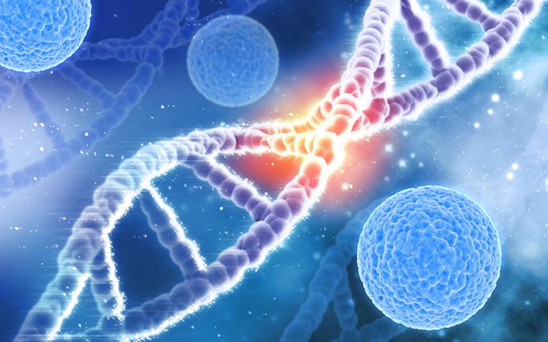 Pruebas de Paternidad y Genética - Farmacia Online Marimón